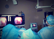 endoscopy images